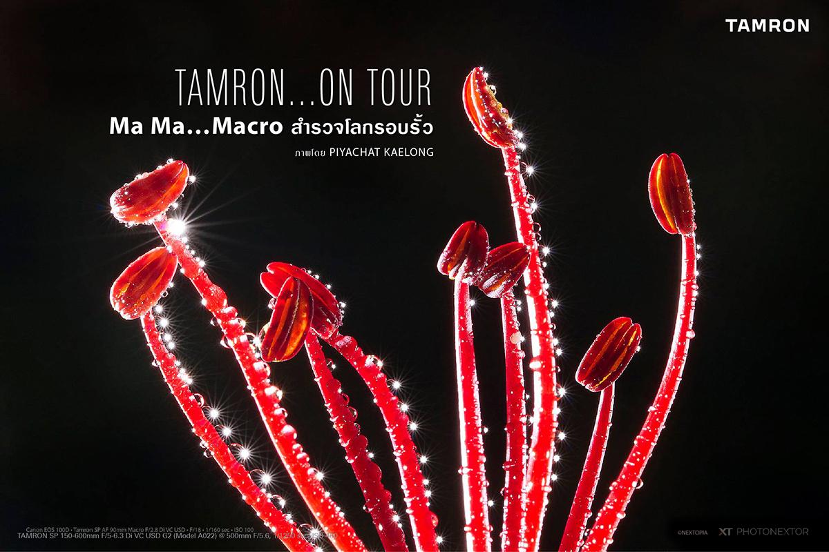 TAMRON ON TOUR