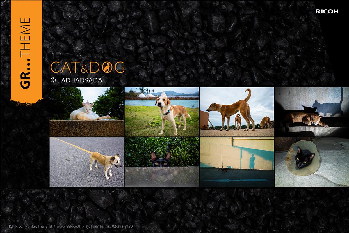 Ricoh GR…Theme Cat & Dog
