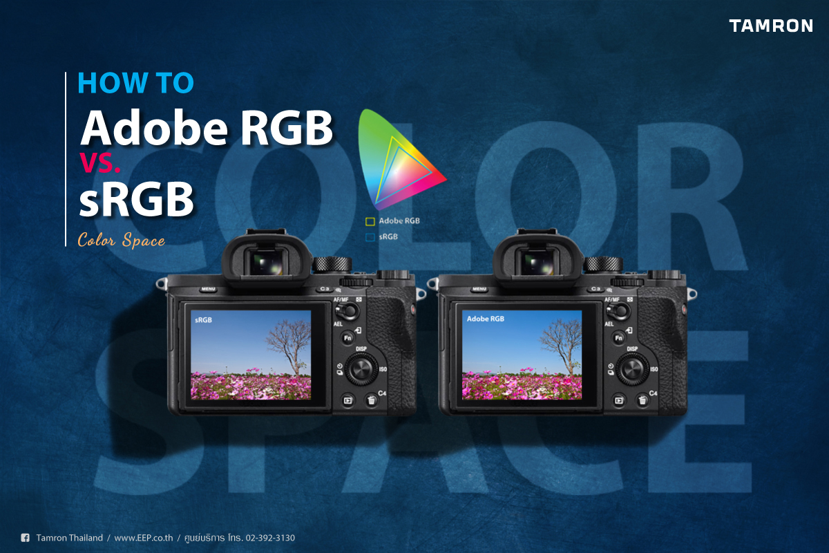 TAMRON How to… Adobe RGB VS. SRGB